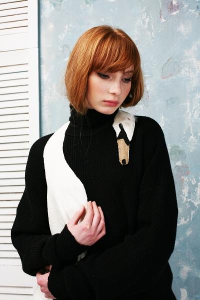 Sweater Swan